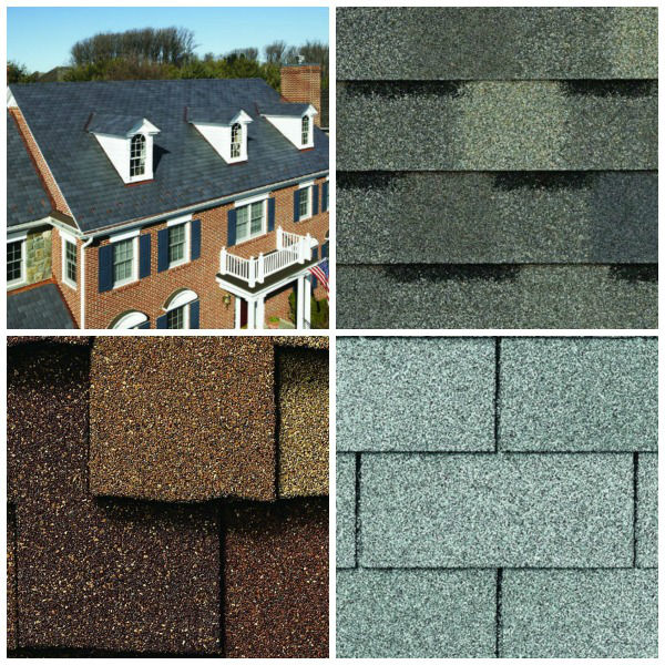 Shingles and the whole roof system